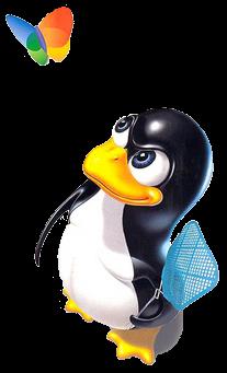 pinguinlucu